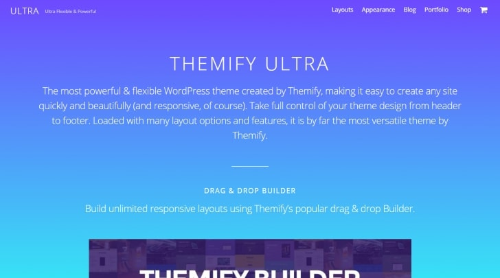 Top 30 Most Popular Premium WordPress Themes in 2019 - WPHour