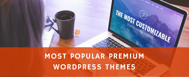 Top 30 Most Popular Premium WordPress Themes in 2018