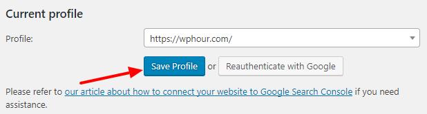 Search Console - Select Profile
