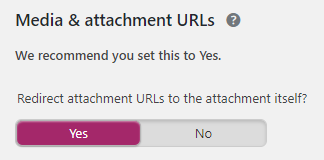 Media and Attachment URLs Settings