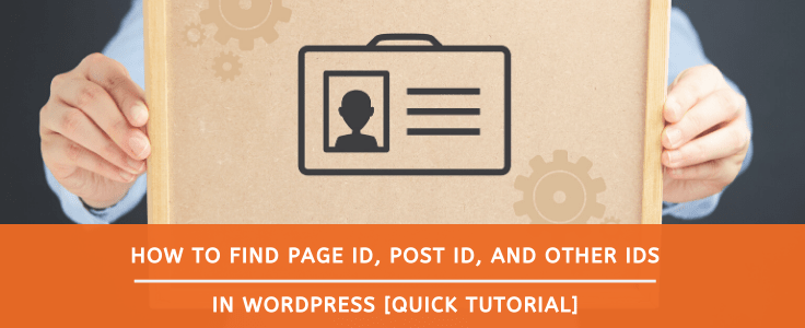 how to find wordpress page id post id and other ids